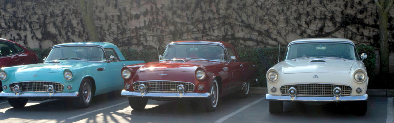 01-classic-thunderbird-car-meeting